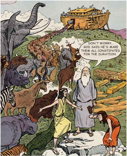 AiG - Noah